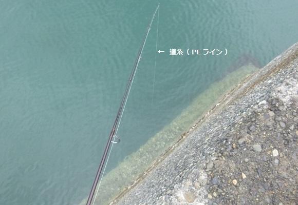 「 チヌ ( 黒鯛 ) 釣り入門 」 0582