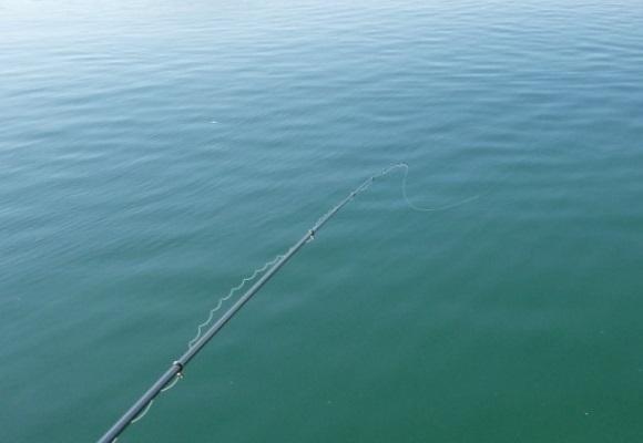 「 チヌ ( 黒鯛 ) 釣り入門 」 0607