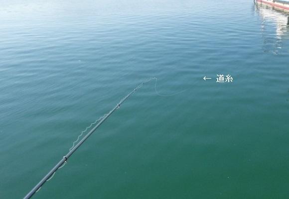 「 チヌ ( 黒鯛 ) 釣り入門 」 0637