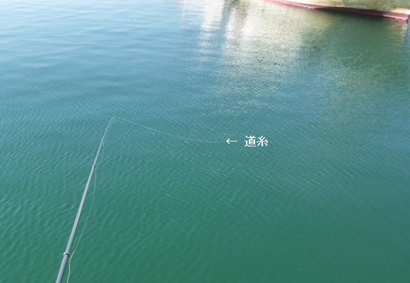 「 チヌ ( 黒鯛 ) 釣り入門 」 0638