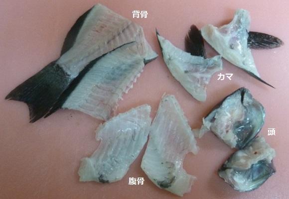 「 チヌ ( 黒鯛 ) 釣り入門 」 0655