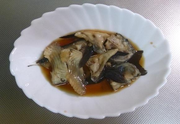 「 チヌ ( 黒鯛 ) 釣り入門 」 0656