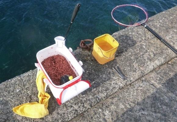「 チヌ ( 黒鯛 ) 釣り入門 」 0699