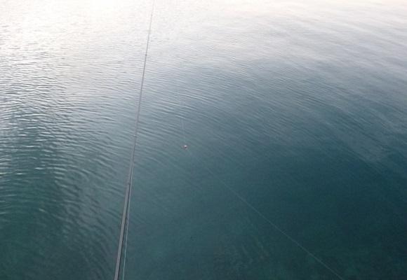 「 チヌ ( 黒鯛 ) 釣り入門 」 0708
