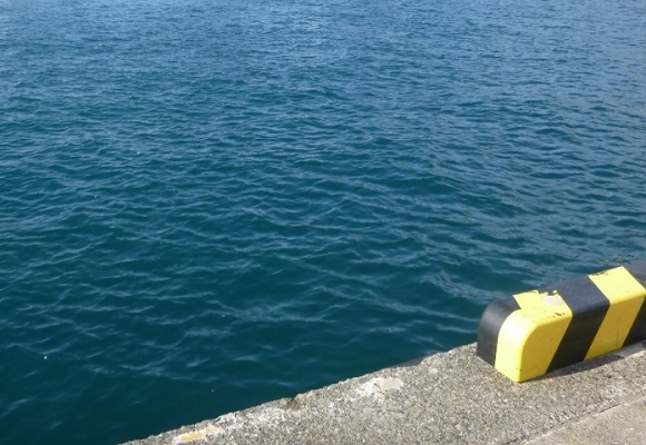 「 チヌ ( 黒鯛 ) 釣り入門 」 0746