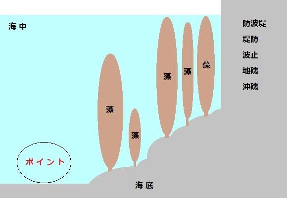 「 チヌ ( 黒鯛 ) 釣り入門 」 0754