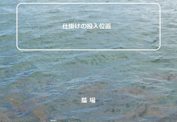 「 チヌ ( 黒鯛 ) 釣り入門 」 0755