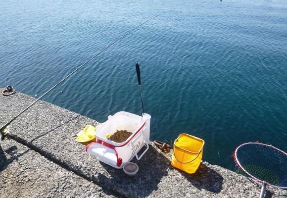 「 チヌ ( 黒鯛 ) 釣り入門 」 0770