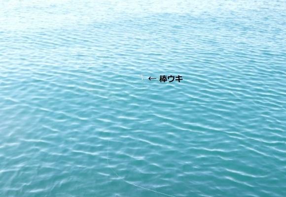 「 チヌ ( 黒鯛 ) 釣り入門 」 0772