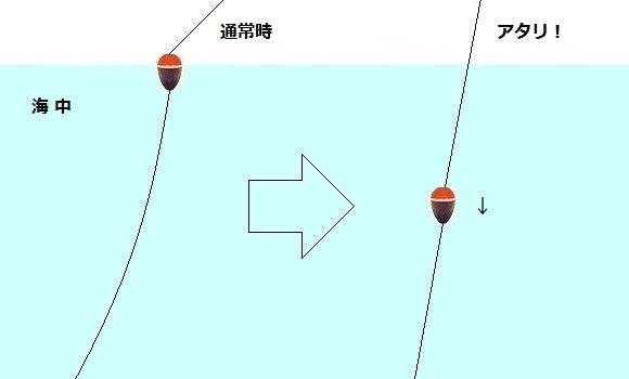 「 チヌ ( 黒鯛 ) 釣り入門 」 0841