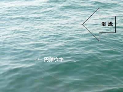 「 チヌ ( 黒鯛 ) 釣り入門 」 0844