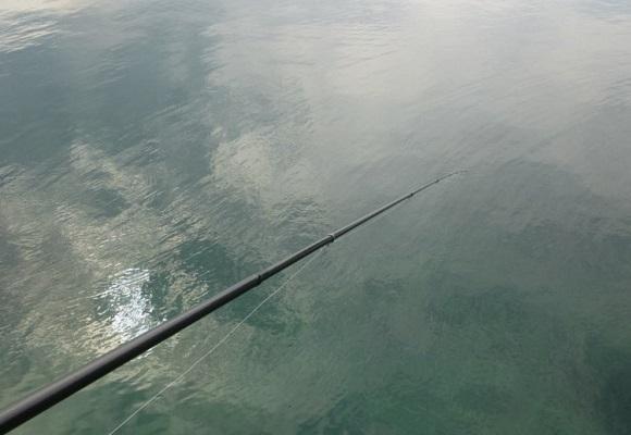 「 チヌ ( 黒鯛 ) 釣り入門 」 0867