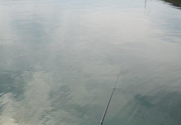 「 チヌ ( 黒鯛 ) 釣り入門 」 0870