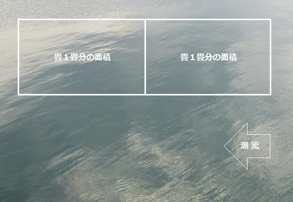 「 チヌ ( 黒鯛 ) 釣り入門 」 0872