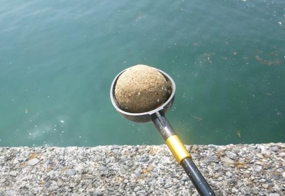 「 チヌ ( 黒鯛 ) 釣り入門 」 0892
