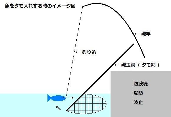 「 チヌ ( 黒鯛 ) 釣り入門 」 0911