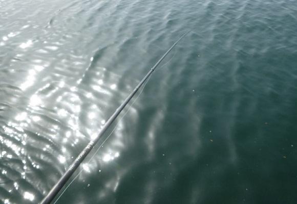 「 チヌ ( 黒鯛 ) 釣り入門 」 0916