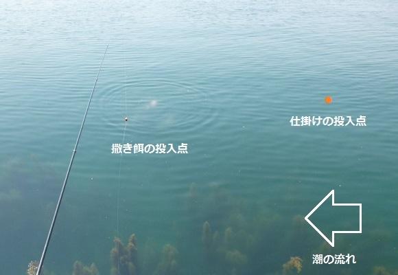 「 チヌ ( 黒鯛 ) 釣り入門 」 0927