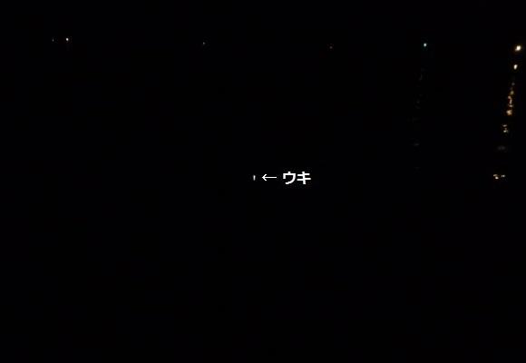「 チヌ ( 黒鯛 ) 釣り入門 」 0943