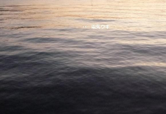 「 チヌ ( 黒鯛 ) 釣り入門 」 0953
