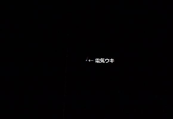 「 チヌ ( 黒鯛 ) 釣り入門 」 0958