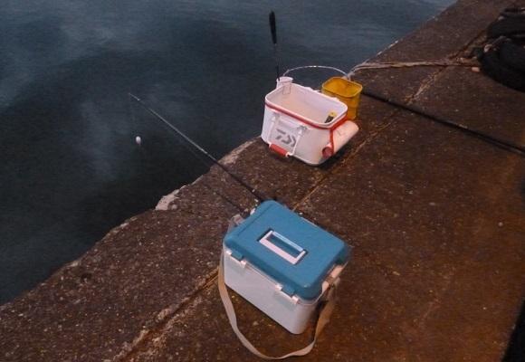 「 チヌ ( 黒鯛 ) 釣り入門 」 0995