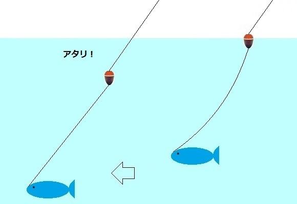 「 チヌ ( 黒鯛 ) 釣り入門 」 1129