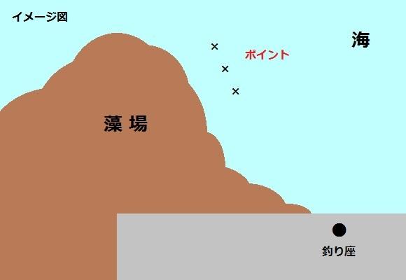 「 チヌ ( 黒鯛 ) 釣り入門 」 1181
