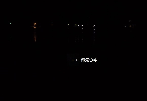 「 チヌ ( 黒鯛 ) 釣り入門 」 1185