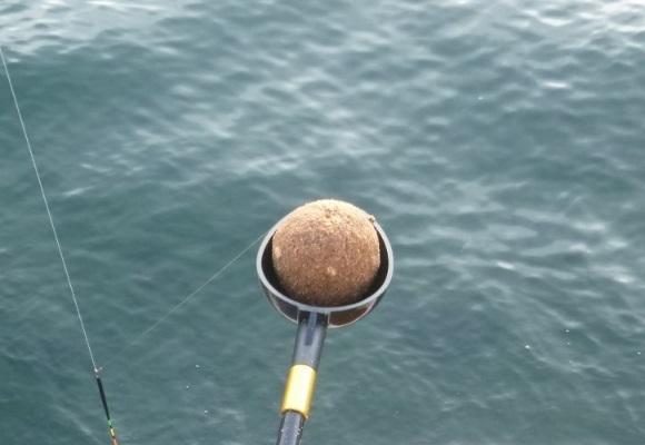 「 チヌ ( 黒鯛 ) 釣り入門 」 1272