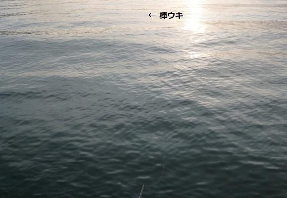 「 チヌ ( 黒鯛 ) 釣り入門 」 1275