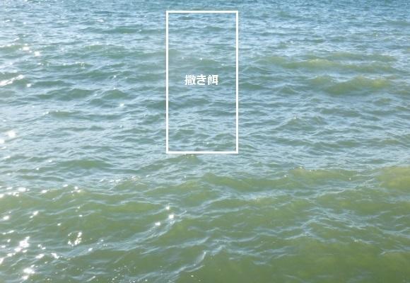 「 チヌ ( 黒鯛 ) 釣り入門 」 1369