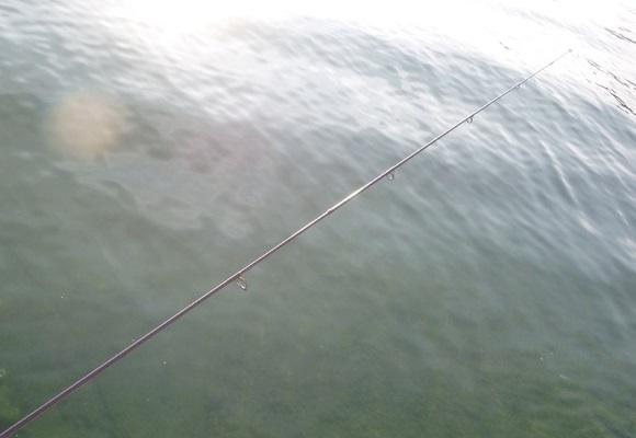 「 チヌ ( 黒鯛 ) 釣り入門 」 1378