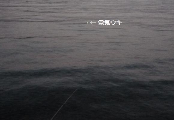「 チヌ ( 黒鯛 ) 釣り入門 」 1425