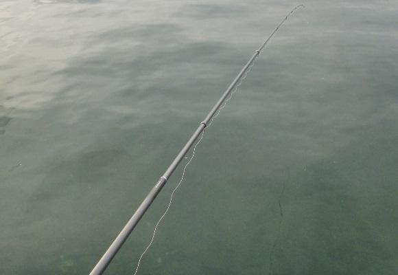 「 チヌ ( 黒鯛 ) 釣り入門 」 1742