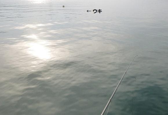 「 チヌ ( 黒鯛 ) 釣り入門 」 1778
