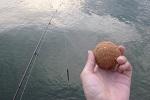 【 検証 】ルアーロッドでチヌ( クロダイ )の紀州釣りは可能なのか?.jpg