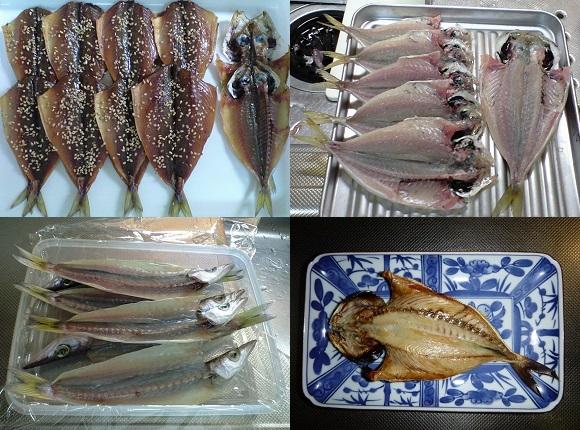 「 チヌ ( 黒鯛 ) 釣り入門 」 0084