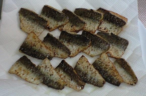 「 チヌ ( 黒鯛 ) 釣り入門 」 0158
