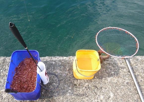 「 チヌ ( 黒鯛 ) 釣り入門 」 0174