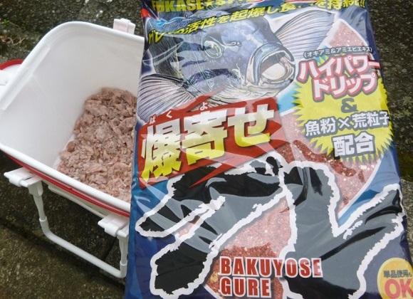 「 チヌ ( 黒鯛 ) 釣り入門 」 0193
