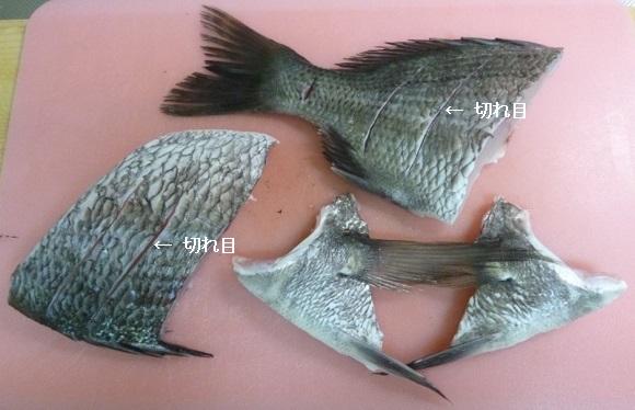 「 チヌ ( 黒鯛 ) 釣り入門 」 0205