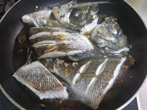 「 チヌ ( 黒鯛 ) 釣り入門 」 0207
