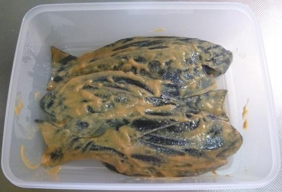 「 チヌ ( 黒鯛 ) 釣り入門 」 0219
