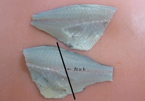 「 チヌ ( 黒鯛 ) 釣り入門 」 0222