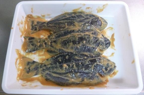 「 チヌ ( 黒鯛 ) 釣り入門 」 0223