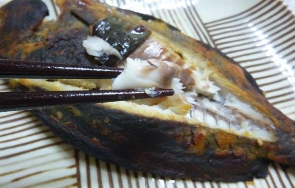 「 チヌ ( 黒鯛 ) 釣り入門 」 0225