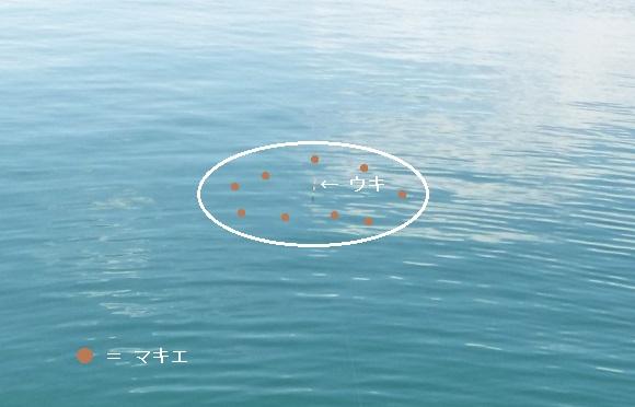 「 チヌ ( 黒鯛 ) 釣り入門 」 0232