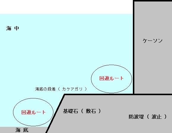 「 チヌ ( 黒鯛 ) 釣り入門 」 0259