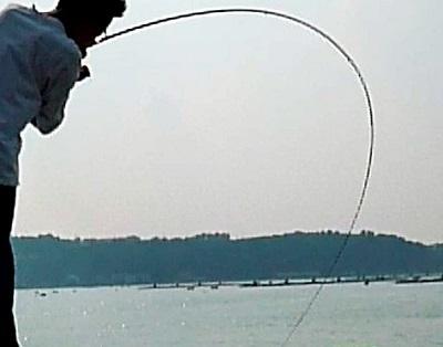 「 チヌ ( 黒鯛 ) 釣り入門 」 0286